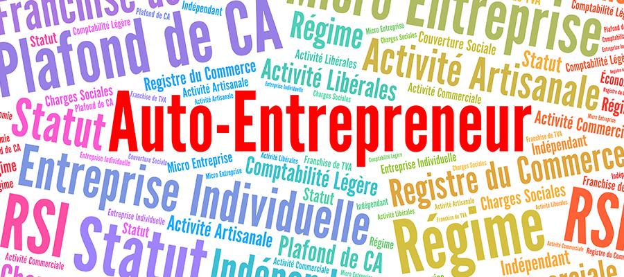 statut d auto entrepreneur